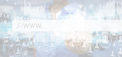 Das World Wide Web - ein sehr vielfältiges Netzwerk