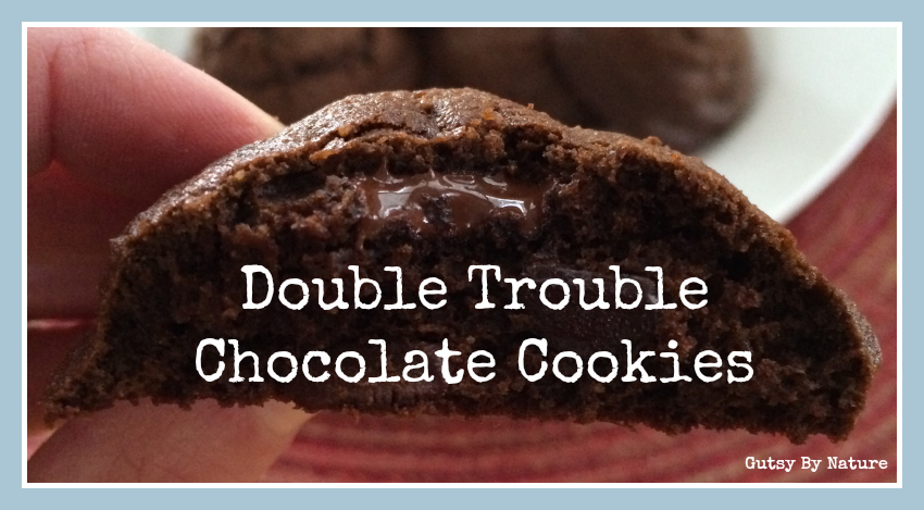 double trouble chocolate cookies 2