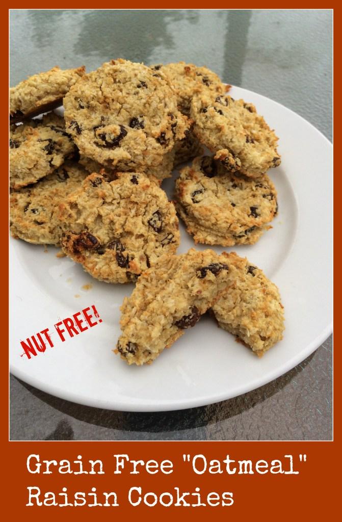 grain free oatmeal raisin cookies