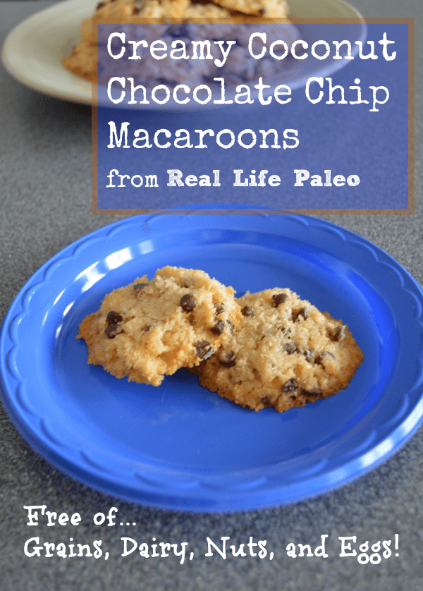 creamy coconut chocolate chip macaroons 2