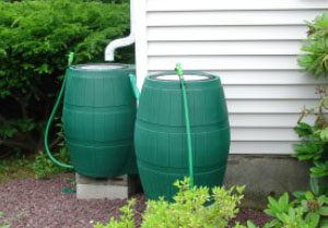 McKinney Rain Barrels