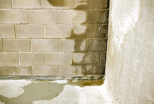 prevent rainwater damage water seepage gutter king wichita cleaning