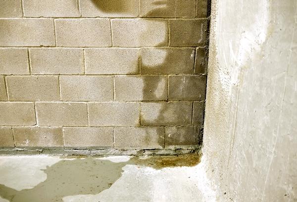 prevent rainwater damage water seepage gutter king wichita cleaning