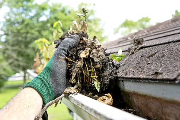 clogged gutter Things a homeowner needs to know tips gutter cleaning wichita gutter king wichita