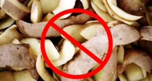 Potato peels belong in the trash, not the sink. 10 things a homeowner needs to know.