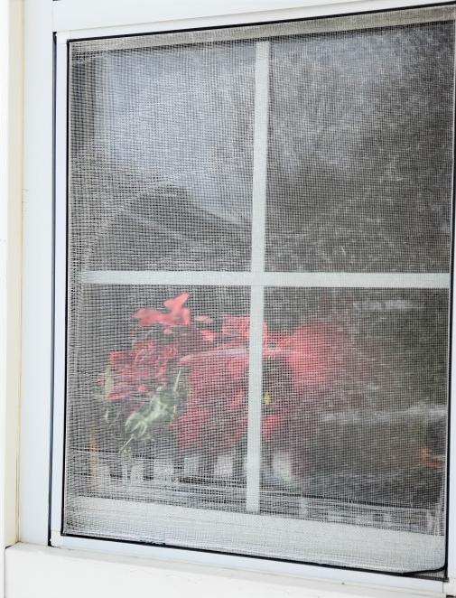 how to ruin a window screen power wash window screen gutter king wichita