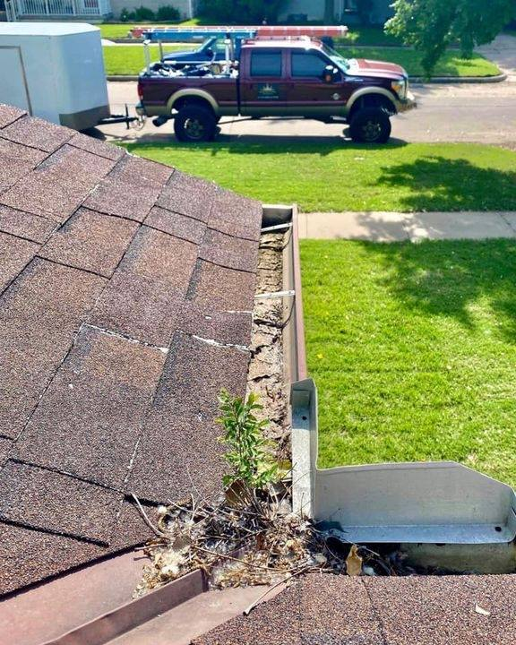 gutter maintenance is important clogged gutter