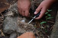 askari Lodge bush survival skills
