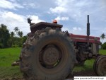 Black Bush Polder - Tractor