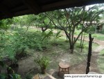 Rock View Lodge - Annai - Rupununi