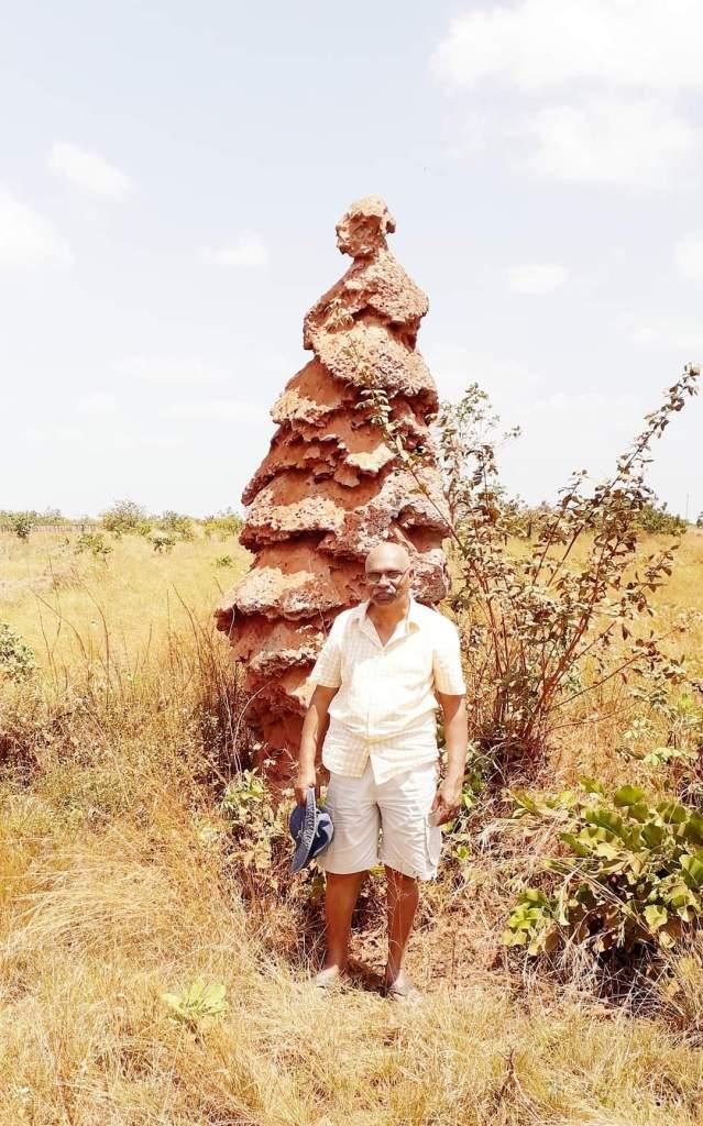 Termite City, Region 9