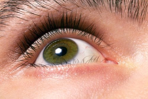 Hazel Eyes: Learn Why People with Greenish Eye Color are ...