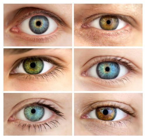 Hazel Eyes Learn Why People with Greenish Eye Color are Rare