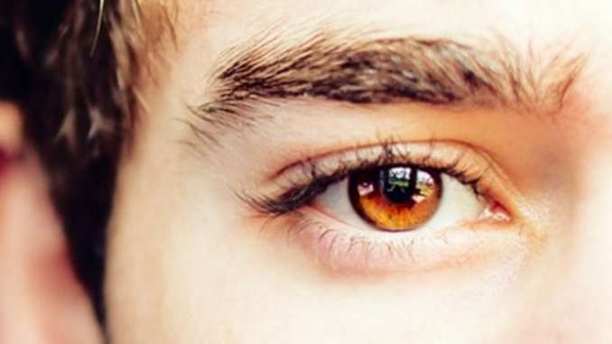 Learn About The Origin of Amber Eyes in People Guy Counseling