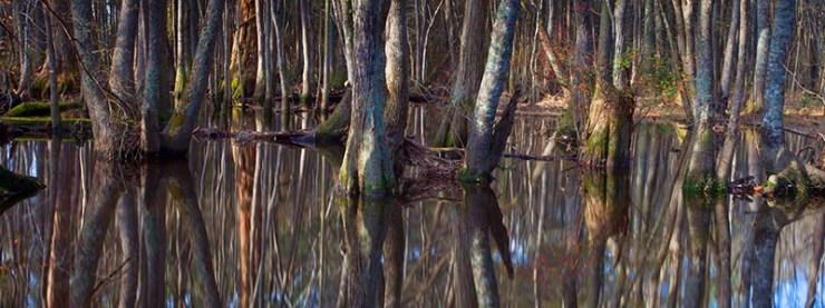 Raeford, Raeford North Carolina, Lumber River, outdoor photography, Guy Sagi, Guy J. Sagi, Hoke County, Hoke County North Carolina, Fear and Loading, Fear & Loading