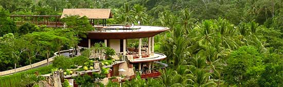 picture of house in jungle