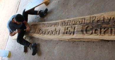 Voluntariado de alto valor en la Reserva Cañada el Carmen