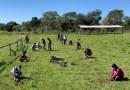 Jornada de plantación forestal en Mbuyapey
