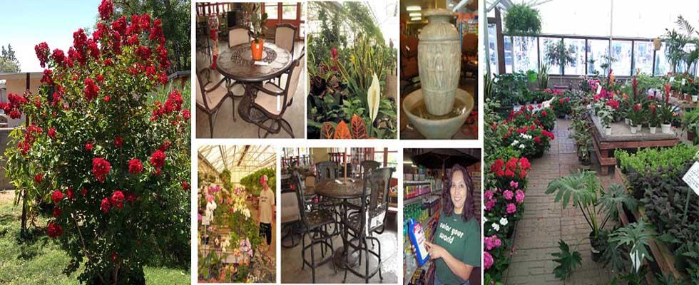 las-cruces-gardening