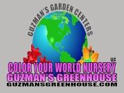 Paul Guzman of Guzman's Greenhouse
