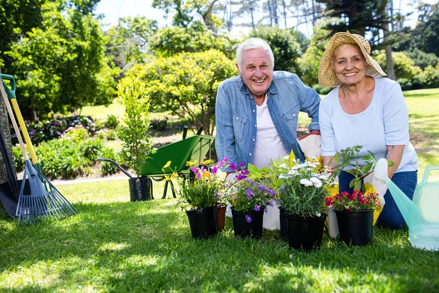 Portrait of happy senior couple gardening in the park on a sunny