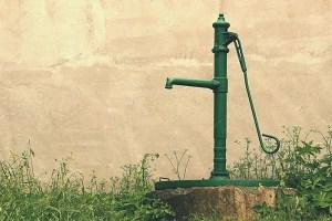 Best practices for watering your garden