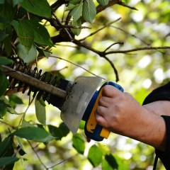 The Benefits of gas hedge trimmers
