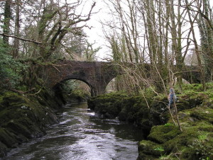 River_Teifi_and_Henllan_Bridge_-_Geograph_-_724320[1]