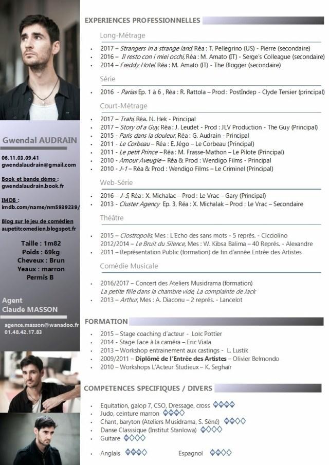 profil de com u00e9dien  u2013 gwendal audrain