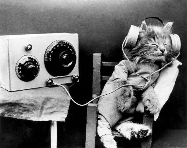 gwendalperrin.net Cat Headphones Black White