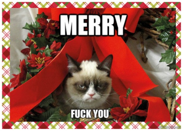 gwendalperrin.net grumpy cat merry fuck you christmas