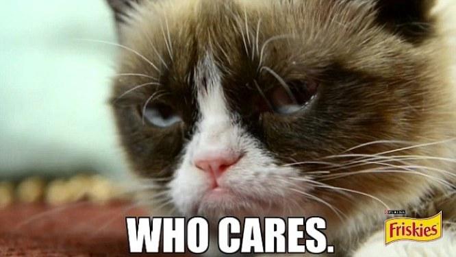 gwendalperrin.net grumpy cat who cares