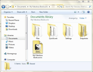 project files in Windows Explorer