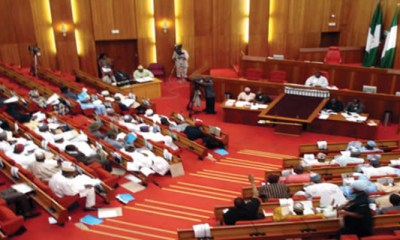 Senate Confirms Buratai, Others As Ambassadors, Ignores Petitions