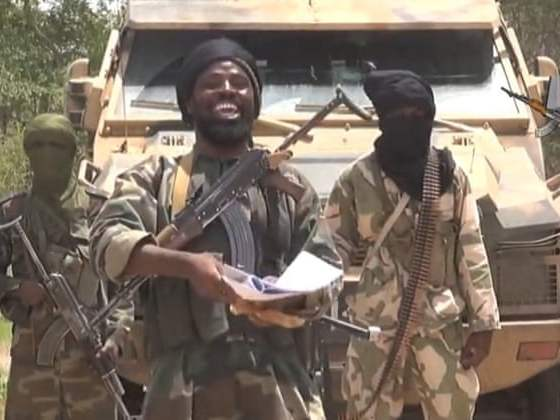 Boko Haram Insurgents Kill Five, Abduct 30 Women In Adamawa Village