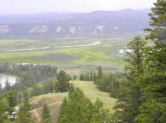 Green Columbia wetlands in B.C.