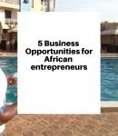 Opportunities for African entrepreneurs