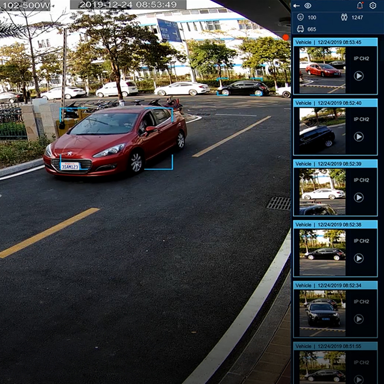Vehicle Detection NVR 1