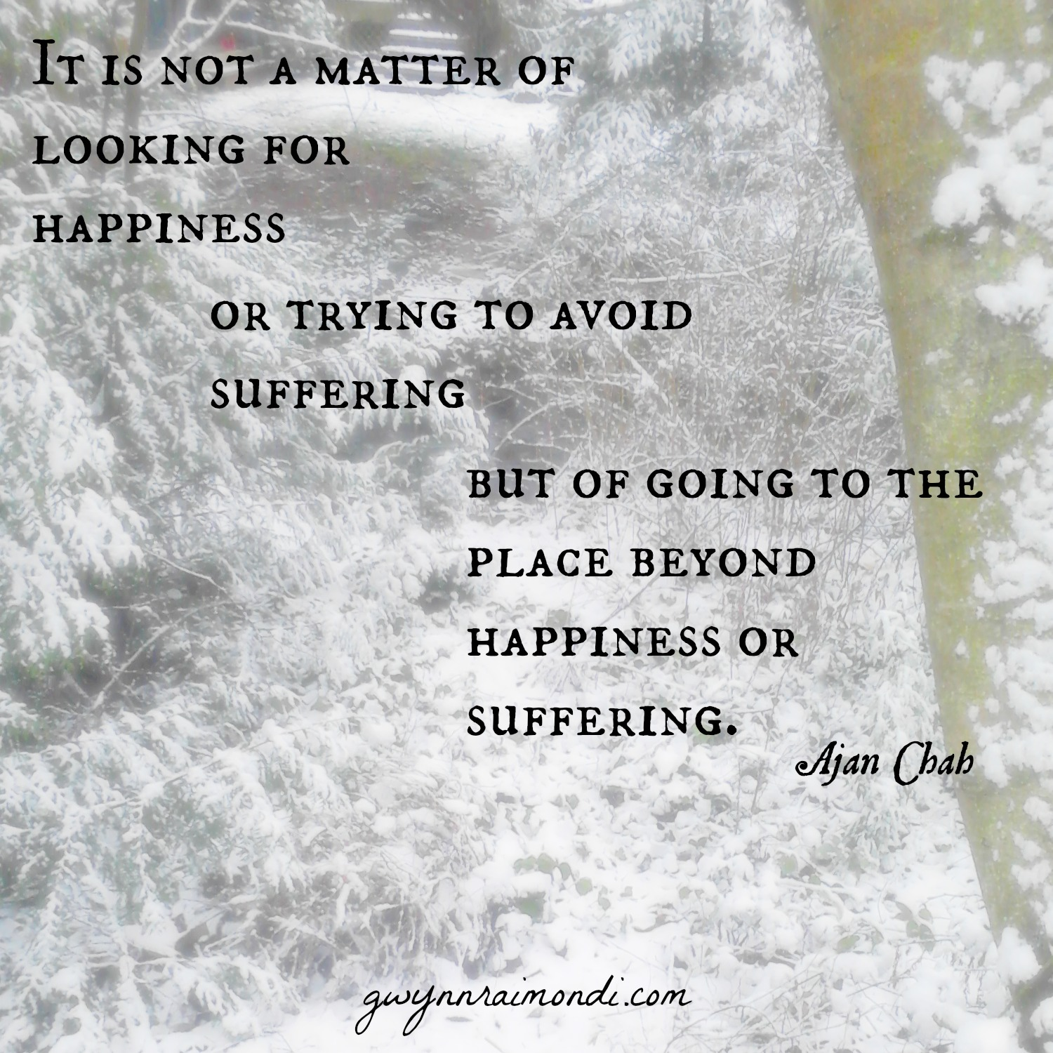 beyond happiness or suffering 29th