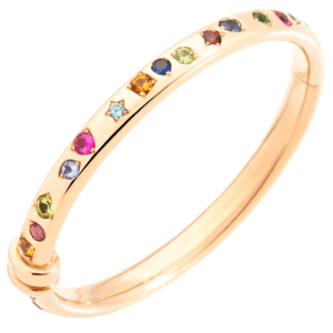 Bracelet Iconica Bangle in Rose Gold with Various Stones
