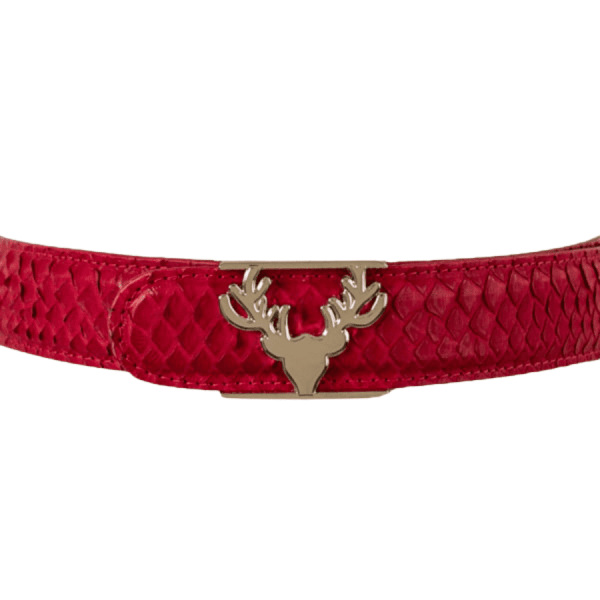 Python Belt in Red product shot front view