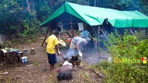 Roasting fish in the deep Mazaruni. Camp style.