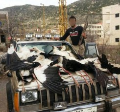 Storke_massakre