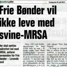 FrieBonder_MRSA001_crop