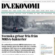SvenskeGrise_DNforside