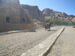 transport in Petra