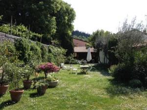 Trädgård i Soave