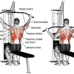 wide-grip-lat-pulldown-lats exerises
