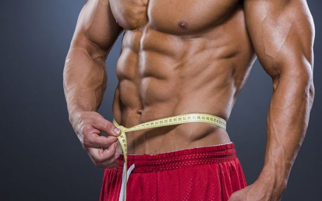 Get Shredded Diet