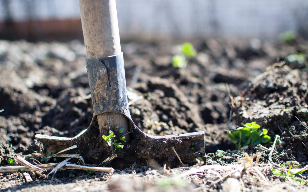 Why Shoveling Dirt Is Key To Your Success. Podcast